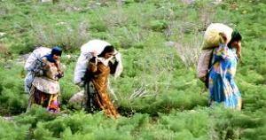 tribal_women_yasouj